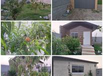 فروش خونه باغ در مرزون آباد  در شیپور-عکس کوچک