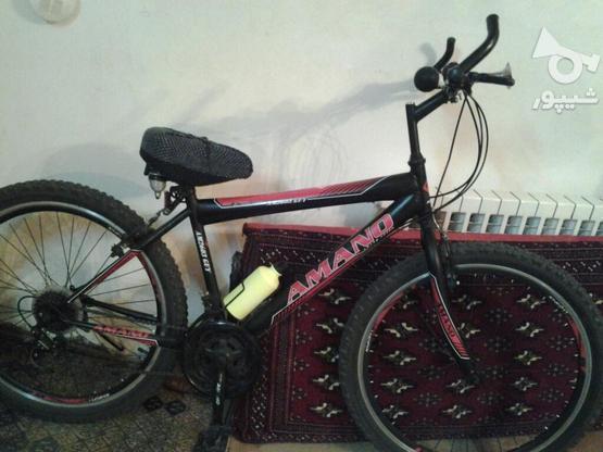 دوچرخه آمانو در گروه خرید و فروش ورزش فرهنگ فراغت در سمنان در شیپور-عکس1