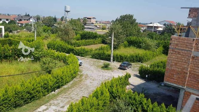فروش زمین مسکونی 390 متر در رویان سیاهرود در گروه خرید و فروش املاک در مازندران در شیپور-عکس5