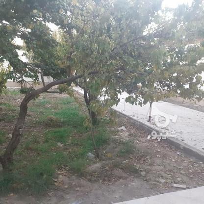 باغ ویلا خوش قواره در بهترین منطقه شهریار در گروه خرید و فروش املاک در تهران در شیپور-عکس4