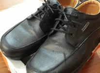 کفش سایز 44 در حد نو در شیپور-عکس کوچک
