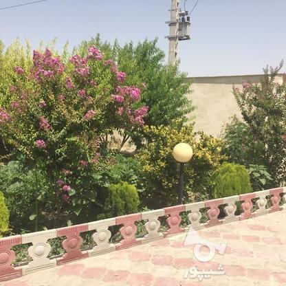 1040متر فرش باغ در گروه خرید و فروش املاک در تهران در شیپور-عکس1