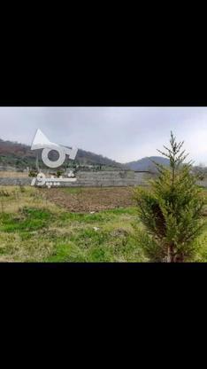 ملک ویو جنگل در گروه خرید و فروش املاک در مازندران در شیپور-عکس1