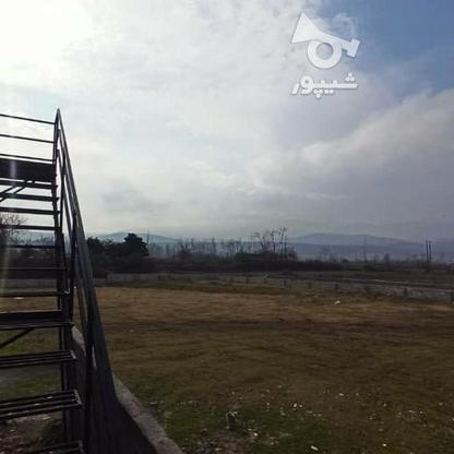 ویلا 250 متری استخر دار شهرکی  در گروه خرید و فروش املاک در مازندران در شیپور-عکس5