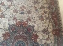 پشتی فرش 700شانه در شیپور-عکس کوچک