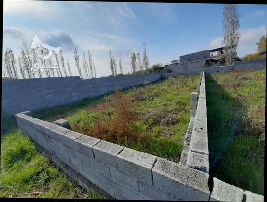 زمین مسکونی 1000متری  در گروه خرید و فروش املاک در مازندران در شیپور-عکس1