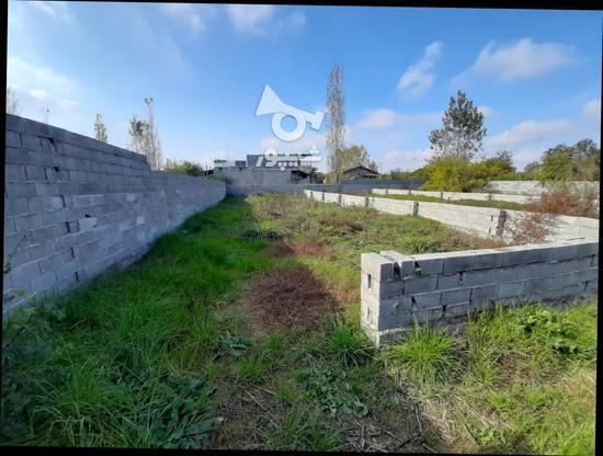 زمین مسکونی 1000متری  در گروه خرید و فروش املاک در مازندران در شیپور-عکس2