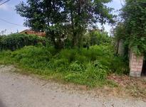 فروش زمین متل قو شمال 467 متر شهرکی خیابان آرا  در شیپور-عکس کوچک