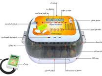 دستگاه جوجه کشی مدل ایزی باتور 6 - ظرفیت 12 عددی در شیپور