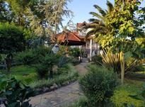 فروش زمین مسکونی 750 متری درخزرشهر جنوبی  در شیپور-عکس کوچک