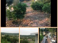 فروش زمین مسکونی ویلای 507 زرین اباد علیا  در شیپور-عکس کوچک