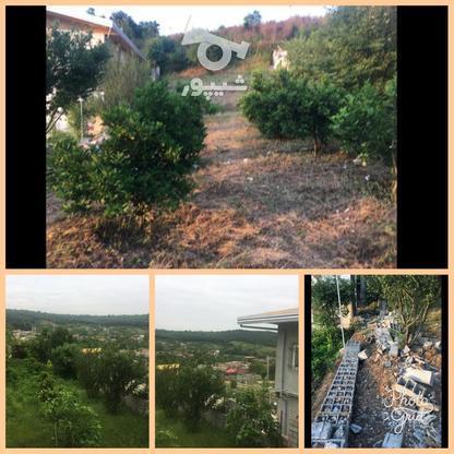 فروش زمین مسکونی ویلای 507 زرین اباد علیا  در گروه خرید و فروش املاک در مازندران در شیپور-عکس1