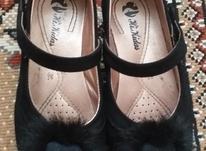 کفش دخترانه در شیپور-عکس کوچک