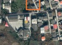 فروش زمین مسکونی 276 متر سند دار در چالوس در شیپور-عکس کوچک