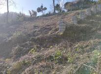 فروش زمین با پروانه ساخت در شیپور-عکس کوچک