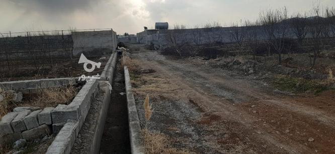 فروش زمین کشاورزی 1150 متر در ملارد در گروه خرید و فروش املاک در تهران در شیپور-عکس4