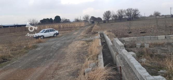 فروش زمین کشاورزی 1150 متر در ملارد در گروه خرید و فروش املاک در تهران در شیپور-عکس5