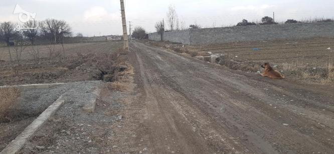 فروش زمین کشاورزی 1150 متر در ملارد در گروه خرید و فروش املاک در تهران در شیپور-عکس7