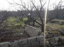باغ 1,000 متری شهریار در شیپور-عکس کوچک