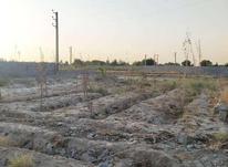 فروش زمین با موقعیت عالی 1000متر در شهریار در شیپور-عکس کوچک