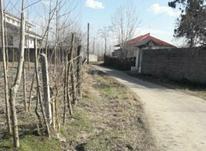 فروش زمین مسکونی 318 متر در صومعه سرا در شیپور-عکس کوچک