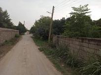فروش زمین کشاورزی دارای انشعابات در محمودآباد در شیپور-عکس کوچک