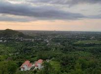 فروش زمین مسکونی 3000 متر در نشتارود در شیپور-عکس کوچک