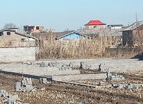 فروش اقساطی زمین شهرکی فریدونکنار در شیپور-عکس کوچک