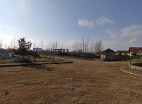 فروش زمین مسکونی 250 متر در کیاشهر در شیپور-عکس کوچک