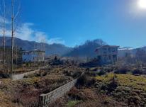 زمین مسکونی 460 متر در کتشال لاهیجان در شیپور-عکس کوچک