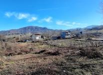 زمین مسکونی 400 متر درکتشال لاهیجان در شیپور-عکس کوچک