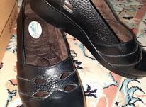 کفش زنانه چرم طبی گلچین سایز38 در شیپور-عکس کوچک