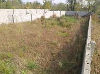 فروش زمین مسکونی 300 متر در لاهیجان در شیپور-عکس کوچک