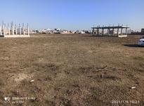 فروش زمین مسکونی 204 متری در شیپور-عکس کوچک