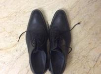 کفش مجلسی چرم مردانه سایز 42 در شیپور-عکس کوچک