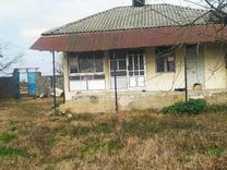 فروش خانه و کلنگی 800 متر در رضوانشهر در شیپور