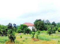 زمین مسکونی 200 متری سرخرود در شیپور-عکس کوچک
