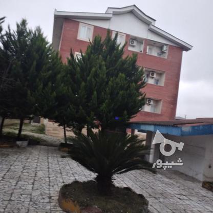 اجاره آپارتمان 85 متر در کلارآباد در گروه خرید و فروش املاک در مازندران در شیپور-عکس12