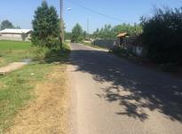 فروش زمین مسکونی 253 متر در کوچصفهان در شیپور-عکس کوچک