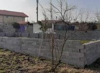فروش زمین مسکونی 280 متر در صومعه سرا در شیپور-عکس کوچک