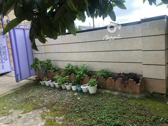 ویلا با ویو بسیار عالی روبروی کوه با سند تک برگ در گروه خرید و فروش املاک در گیلان در شیپور-عکس5