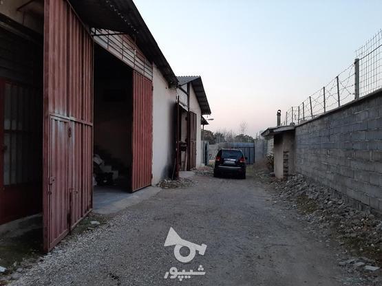 فروش زمین اداری و تجاری 500 مترکمربندی   در گروه خرید و فروش املاک در مازندران در شیپور-عکس1