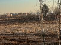 1500متر زمین مخصوص باغ بفروش میرسد زمین پشت اتوبان  میباشد  در شیپور-عکس کوچک
