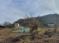 320 متر زمین مسکونی در کوهبنه در شیپور-عکس کوچک