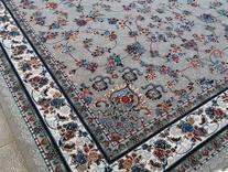 فرش دربار طرح های افشان کرم و سورمه ایی در شیپور