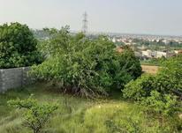 فروش زمین  350 متری در مهدشت  در شیپور-عکس کوچک