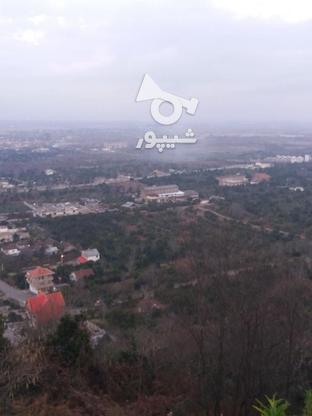 فروش زمین مسکونی 17000 متر در لنگرود در گروه خرید و فروش املاک در گیلان در شیپور-عکس10