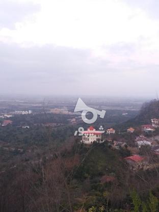 فروش زمین مسکونی 17000 متر در لنگرود در گروه خرید و فروش املاک در گیلان در شیپور-عکس1