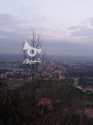 فروش زمین مسکونی 17000 متر در لنگرود در گروه خرید و فروش املاک در گیلان در شیپور-عکس7