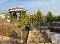 فروش ویلا 300 متر در زیباکنار در شیپور-عکس کوچک